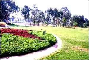 Superbe Botanical Gardens / Sri Kotla Vijaya Bhaskar Reddy Botanical Garden